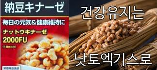 [추천] 낫토엑기스 모음
