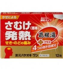 한원 하야오키 원 12포_감기에 의한 오한 발열 두통