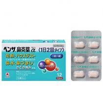 벤자비염약α 12정